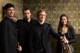 Bild: Internationales Schlosskonzert: Eliot Quartett - Streichquartett