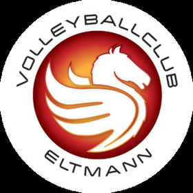 United Volleys - HEITEC Volleys Eltmann