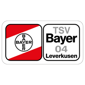 Bild: HSG Blomberg-Lippe - Bayer 04 Leverkusen