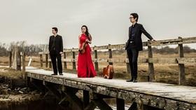 Bild: Amatis Trio - Meisterkonzert Würzburg