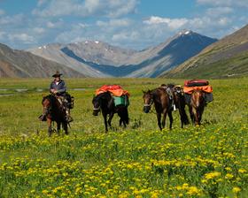 Feuerland bis Alaska - 20 Jahre unterwegs mit Pferden
