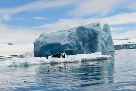 Bild: Antarktis – die letzten großen Abenteuer dieser Erde - Multivisionsvortrag in HD-Qualität und auf Großbildleinwand