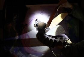 Bild: Peterchens Mondfahrt - Theater Festival für Kinder und Jugendliche