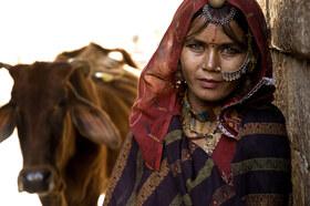 """Bild: """"Culture-Curry – Auf den Spuren der Liebe durch Indien"""""""