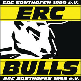 Bild: EV Lindau Islanders - ERC Bulls Sonthofen