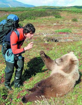 Bild: Storl Media - Multimediashow WILD - Unter Bären und Tigern