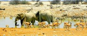 Reiseporträt  Namibia