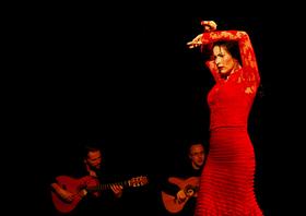 Bild: Rosas Negras - Flamenco