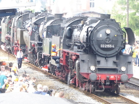 Bild: Zur 27. Dampflok-Parade nach Wolsztyn (PL)