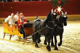 Bild: Neustädter Weihnachtsgala 2020 - Die märchenhafte Pferdeshow zum Fest!