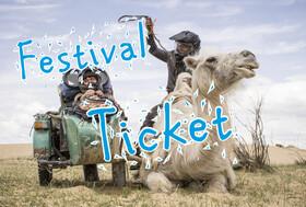 Festival - Ticket - Sonntag