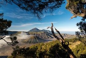 Bild: Der weite Weg nach Bali