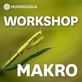 MUNDOLOGIA-Workshop: Makrofotografie