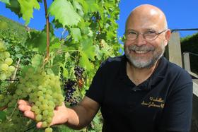 Bild: sächsische Weinverkostung - Vom Winzer moderierte 5- Weinprobe