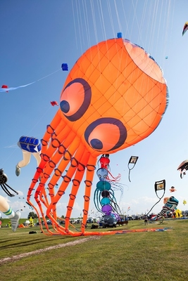 Zirkus- und Drachenfest - Tageskarte für Sonntag