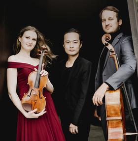 Bild: Klavier, Violoncello und Violine
