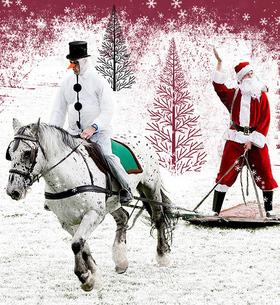 Bild: Neustädter Pferde im Advent 2020 - Neustädter Pferde im Advent 2020