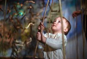 Terz & Tönchen / Bodenseefestival 2020 - Entdecker-Konzert für Kinder ab 6 Monaten