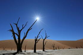Bild: Südafrika und Namibia (Vortrag)