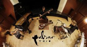 Bild: Pulsar Trio | Welten hören