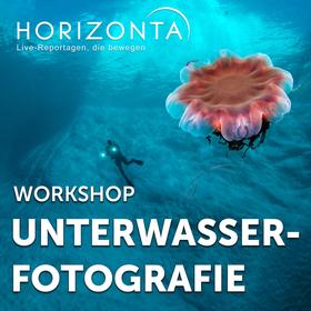 Bild: HORIZONTA-Workshop KIEL: Unterwasserfotografie - Einfach erklärt für Anfänger und Profis