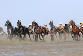 Bild: Duhner Wattrennen