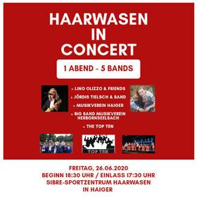 """Bild: """"Haarwasen in concert"""""""