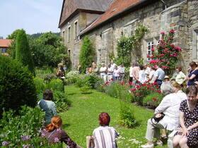 Bild: Rendezvous im Garten - Wissen das wandert: Mönchspfeffer bis Engelwurz