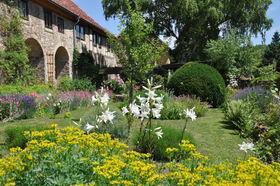 Bild: Drei Gärten: JubiläumsFührung 30-20-10. Von Blütenblau bis Rosenrot: Von Mönchspfeffer bis Engelwurz