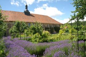 Bild: GartenAbendFührung - Himmel und Erde verbunden: Kloster & Kräuter