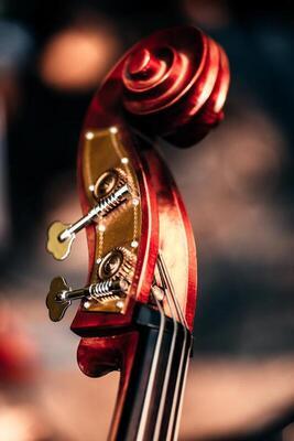 Bild: 7. Frühjahrskonzert - Mandolinenorchester