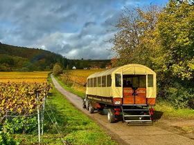"""Original """"Winzer-Express"""" mit Bio-Weinprobe - Planwagenfahrt"""