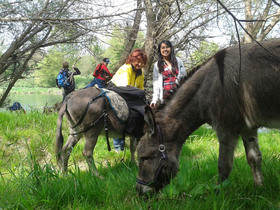Bild: Eselwanderung & Wildkräuterführung mit Oliver Haury