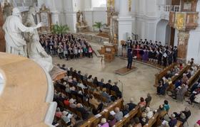 Bild: Konzerte in der Abteikirche