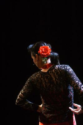 Bild: Flamenco Festival