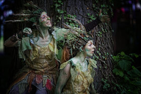 Bild: Sommernacht am Kaiserdom - Magisch Musisch Märchenhaft