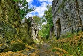 Bild: Mystische Wanderung durch die Hoppelberge bei Langenstein