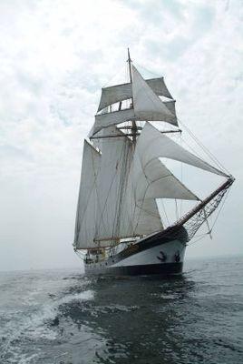 """Halbtagestörn mit """"Swaensborgh"""" zum Sail In, zur SAIL BHV 2020"""