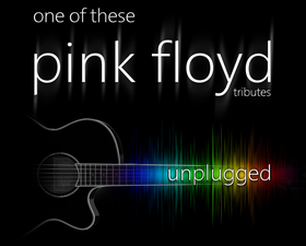 Bild: One Of These Pink Floyd Tributes - Unplugged