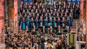 Bild: Bruckner - Haydn