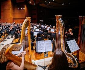 Bild: Stuttgarter Symphoniker