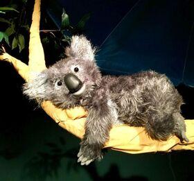 Bild: Koalabär und Freunde - Figurentheater für Kinder ab 3 Jahren