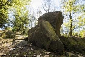 Bild: Wanderung zwischen Riesenstuhl und Eibenhardt - Wandererlebnis 2020