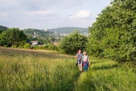 Bild: Wanderung - Das grüne Herz von Marburg - Wandererlebnis 2020