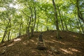Bild: Zu Fuß durch 1000 Jahre Geschichte - Auf dem Gisonenpfad ab Wetter-Treisbach - Wandererlebnis 2020