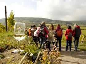 Weinwanderung mit Weinprobe