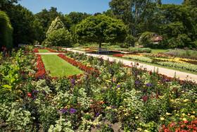 Bild: Führung durch den Botanischen Garten - 111 Jahre Stadtpark
