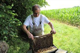 Bild: Darßer NaturfilmFestival: BAYER, Bauern und die Bienen