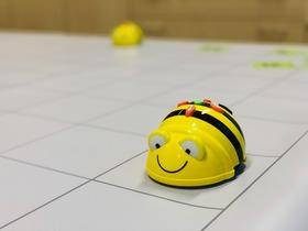 Bild: 37. Baden-Württembergische Literaturtage 2020 - Die Bee Bots sind los! - Programmierworkshop für Kinder
