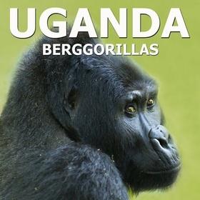 Multivisionsshow - Uganda Heimat der Berggorillas